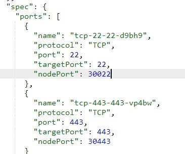 BlueMix Kubernetes 添加/修改自定义端口