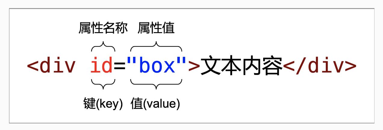 【学习笔记】HTML基础知识复习总结