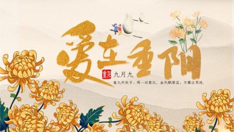 重阳节传统节日黄色中国风PPT模板