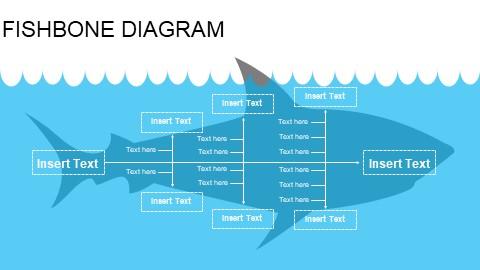6项鲨鱼卡通鱼骨图