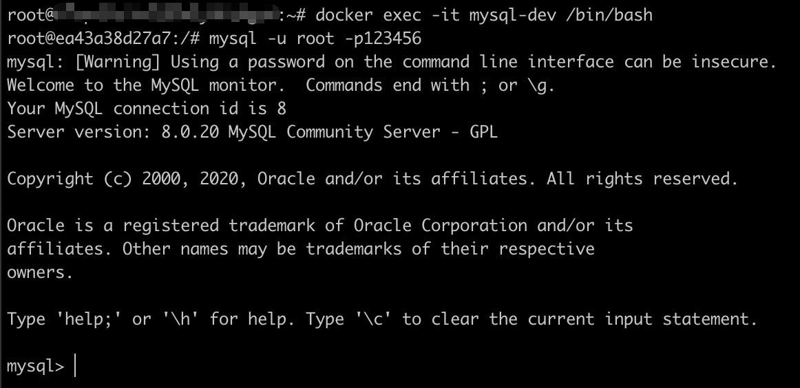 进入MySQL容器并登录