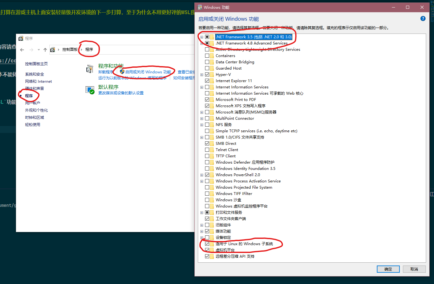 pic enable windows feature