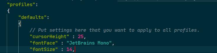 pic window terminal font setup