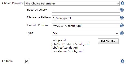 File Choice Parameter