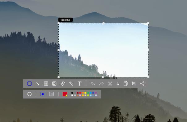 Picsee 看图 & 截图 for MacOS插图3