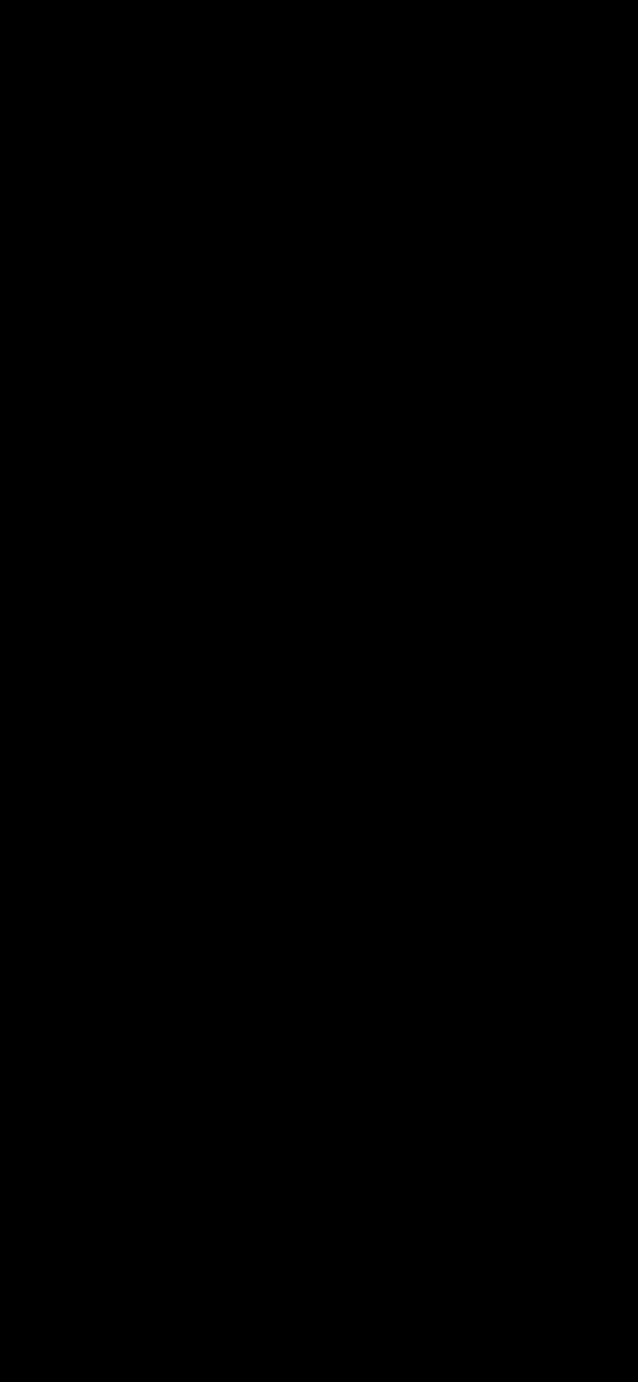 黑壁纸 | iPhone 12 专用绿屏测试壁纸插图5