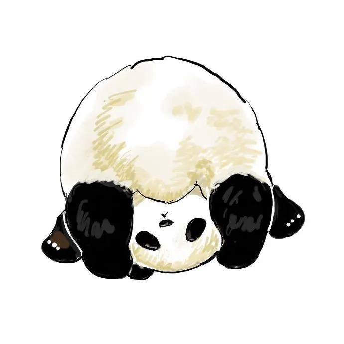 头像 | 超nice的柴犬、熊猫头像插图3