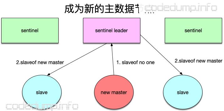 new-master