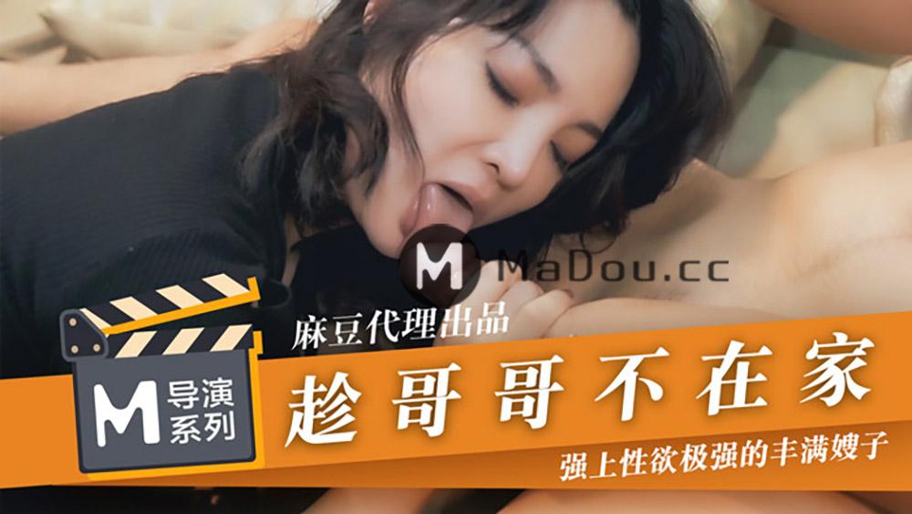 91国产麻豆传媒映画导演系列趁哥哥不在家.强上性欲极强的丰满嫂子[573M/26分]
