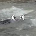 纪录片《忘川 The River of Forgetting》艾晓明 2010年 中文字幕 0001
