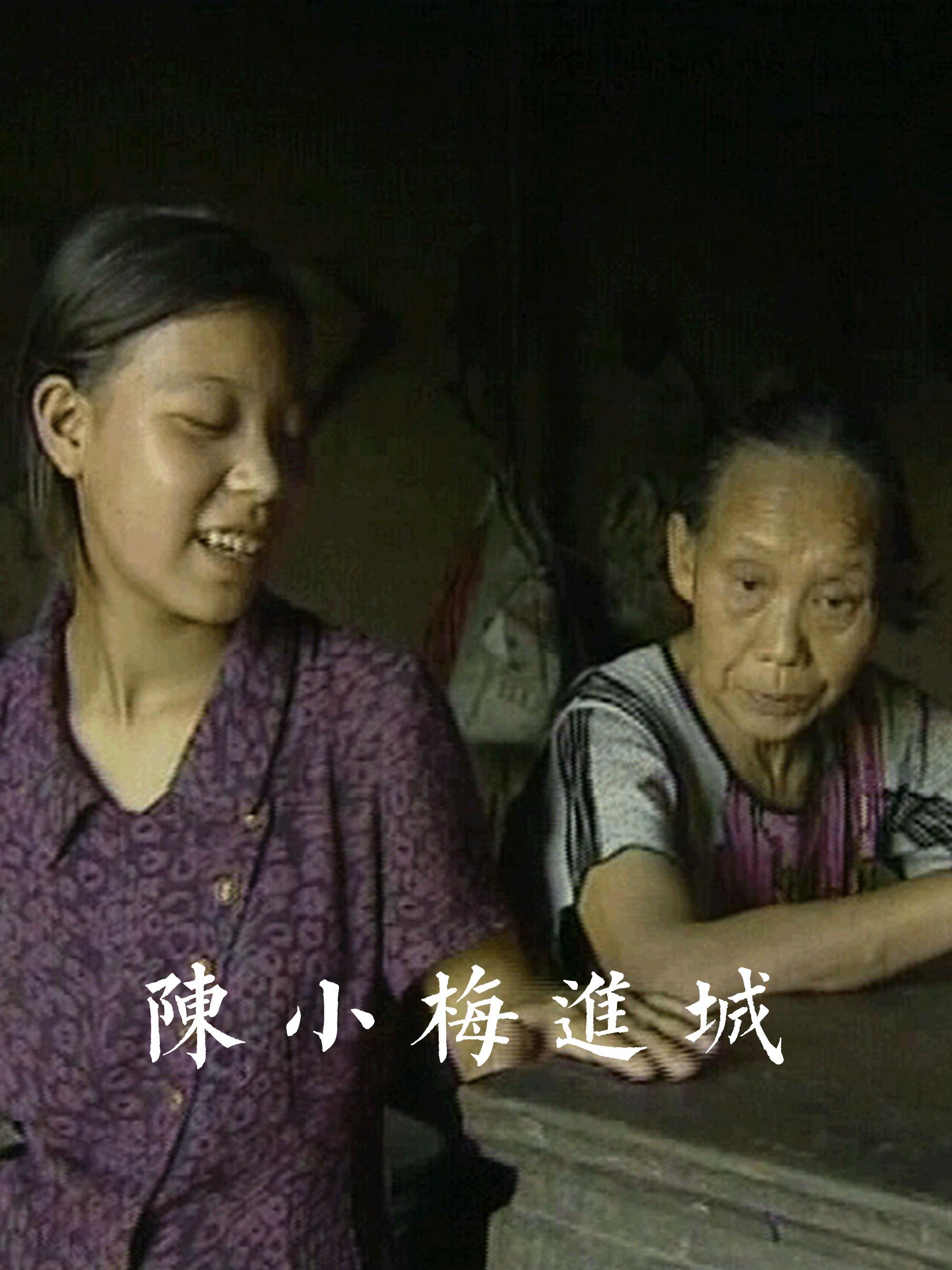 陈小梅进城