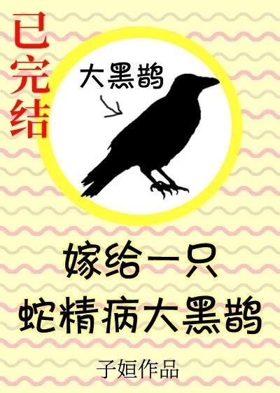嫁给一只傲娇大黑鹊