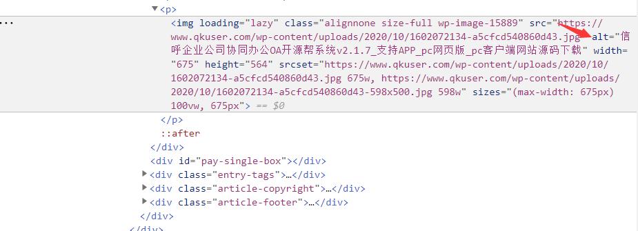 wordpress网站ripro主题自动为文章图片添加ALT标签描述功能纯代码实现