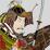 Genpei_Cav_Bodyguard Image