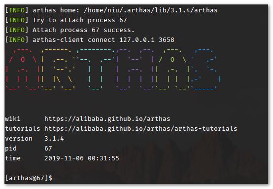 Arthas 启动
