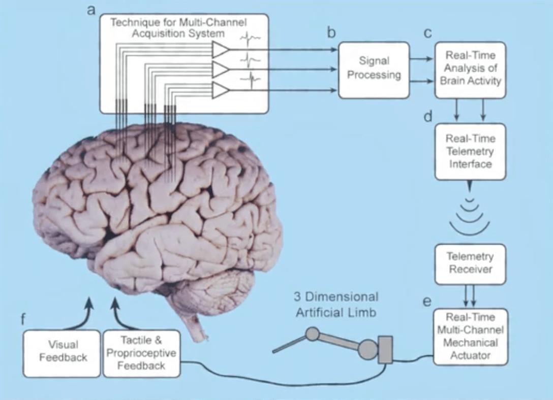 脑机接口实验
