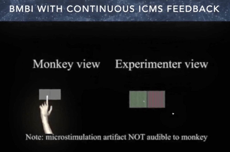 脑机接口实验二