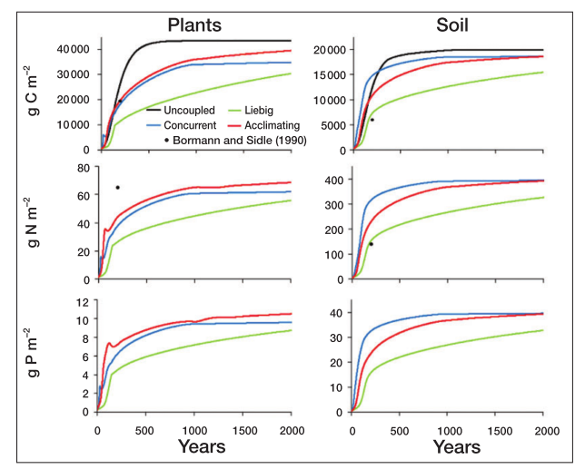 Fig. 2 in Rastetter (2011). Forest and soil nutrient accumulation under the four nutrient coupling models