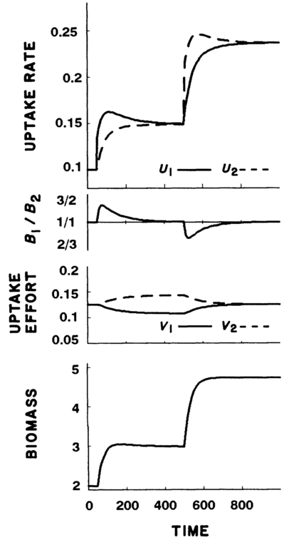 From Fig. 1 of Rastetter and Shaver (1992) - simulation with undepletable nutrients