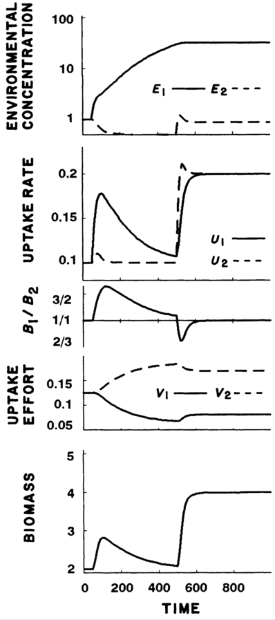 From Fig.2 Rastetter and Shaver (1992) - simulation with depletable nutrients