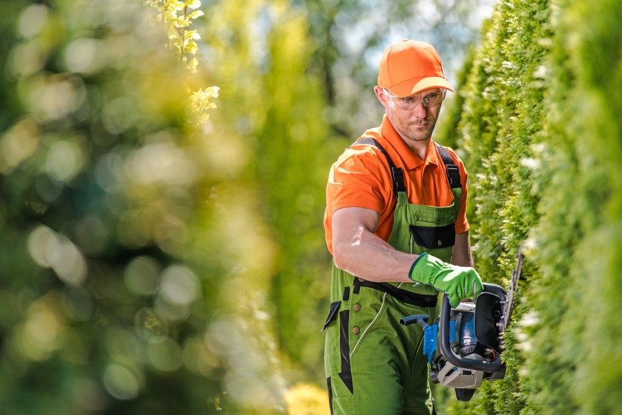 gärtnerarbeiten reinigung