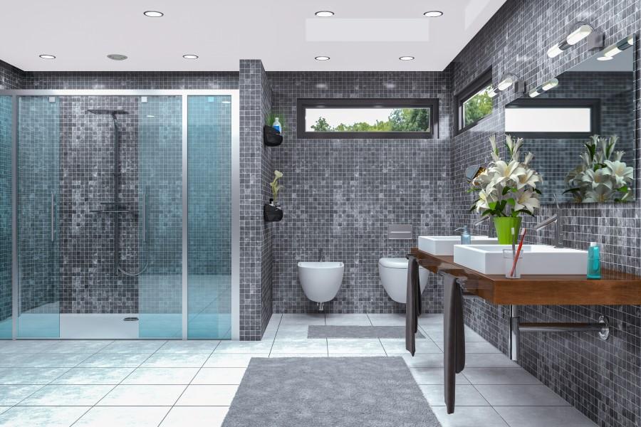 duschreinigung duschkabine