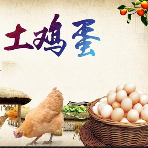 茶花鸡土鸡蛋