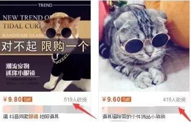 新手也能操作的宠物眼镜项目