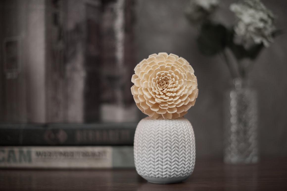 100ml Sola Wood Flower in Ceramic Bottle Fragrance Reed Diffuser