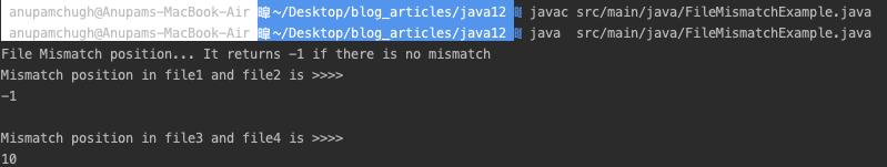 Java 文件不匹配示例程序输出