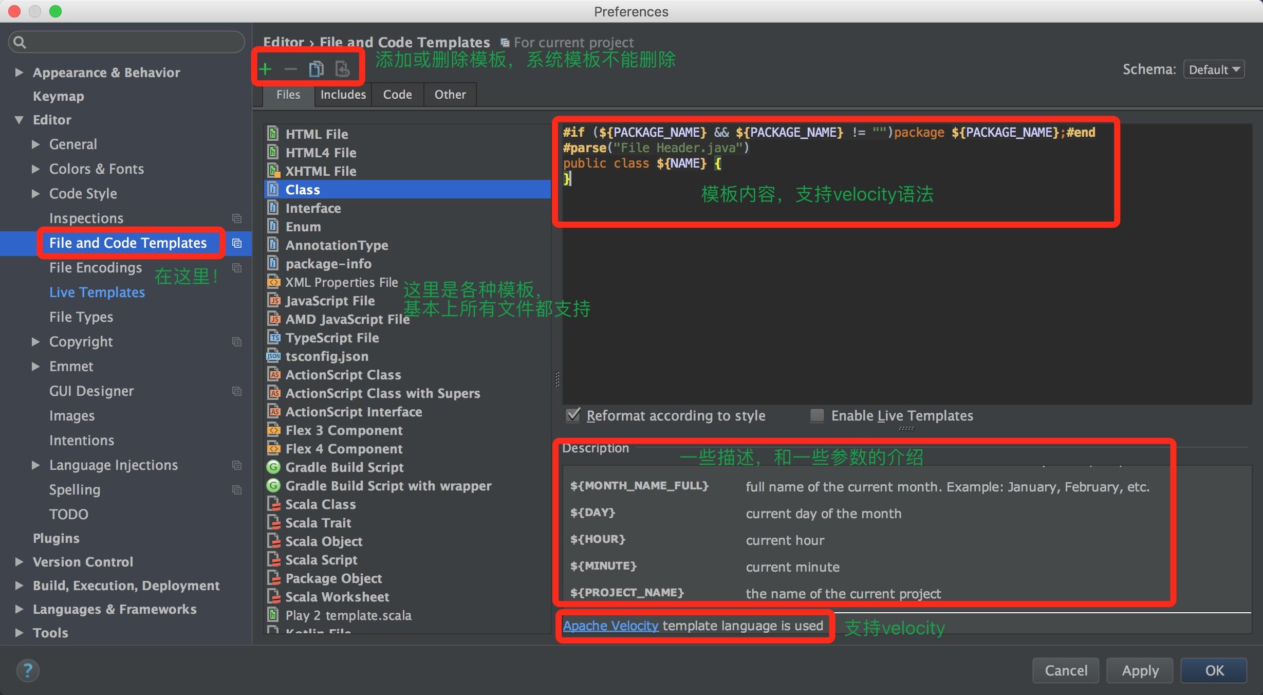 文件代码模板