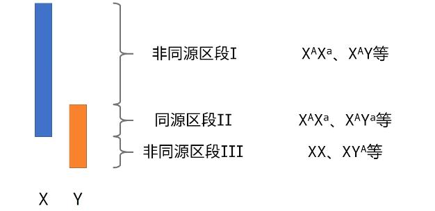image-20200421211603540