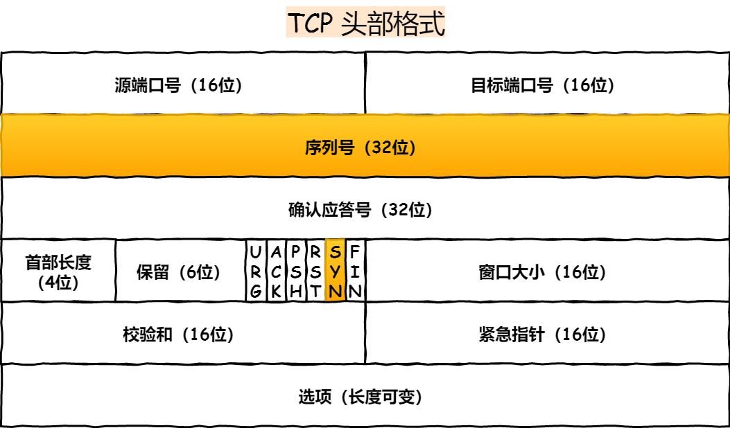 TCP 头部
