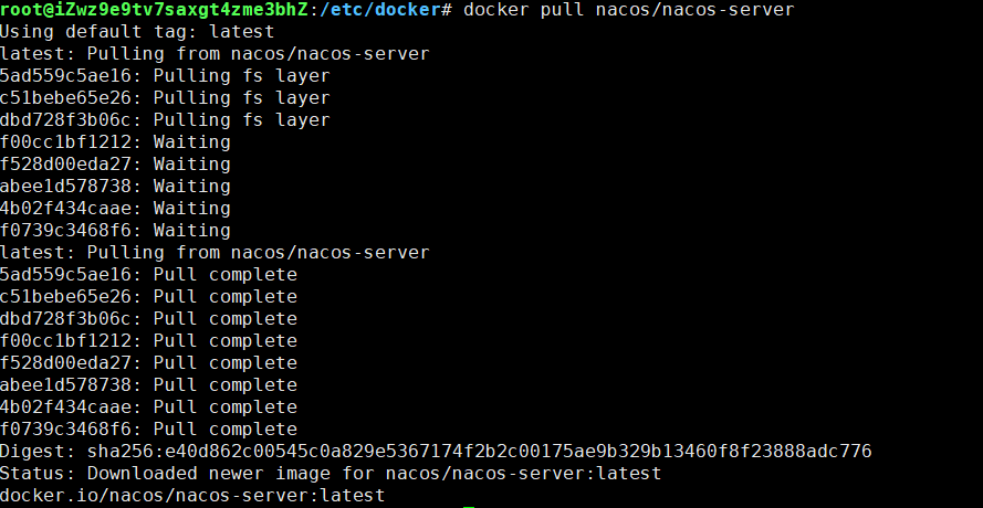 nacos-docker-setup-002.png