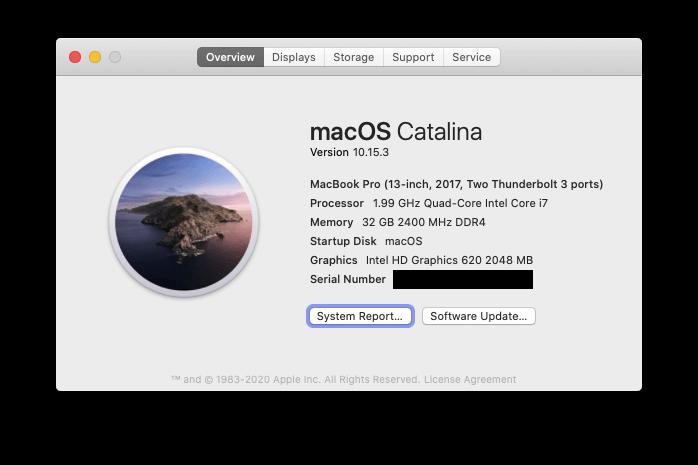 e480-hackintosh/macos-info.png